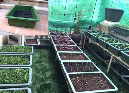 Chậu lưới nhựa trồng rau sạch bằng nhựa PP nguyên sinh